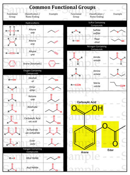 Functional Groups in Organic Chemistry - Student Handout