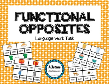 Functional Opposites Clip Cards- autism/sped/elementary/middle/high