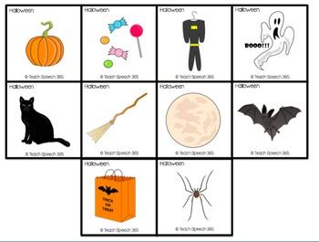 Functional Vocabulary Cards: Holidays
