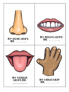 Functions of Body Parts