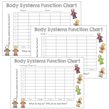 Functions Of Body Systems Bar Chart By La Vonk Creations Tpt