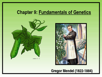 Fundamentals of Genetics (Gregor Mendel)