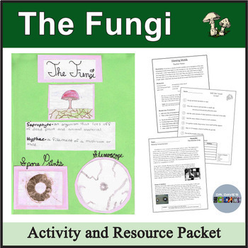 The Fungi: Yeasts, Molds, and Mushrooms