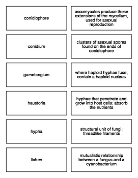 Fungi Flash Cards for Biology II