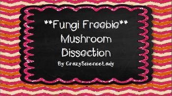 Fungi Freebie:  Mushroom Dissection