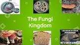 Fungi Lesson PPT- Editable