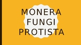 Fungi, Monera and Protista Kingdoms