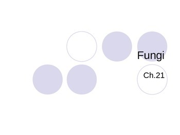 Fungi PowerPoint