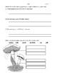 Fungi Quiz