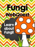 Fungi Webquest
