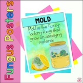 Fungus Vocabulary Posters: Mold, Lichens, Mushrooms, Spores FREE!