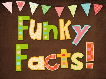 Funky Facts Bulletin Board