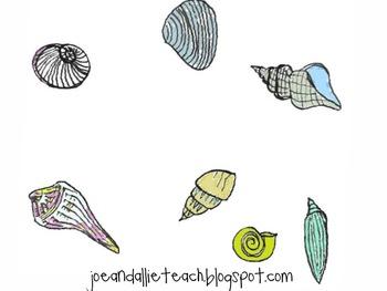 Funky Shells Clip Art Graphics {Summer-Beach-Fun}