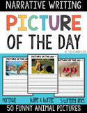 Funny Animals Picture Prompts for Narrative Writing - Dist