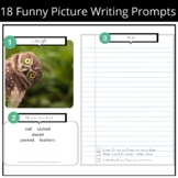 Funny Picture Writing Prompts- Funny Animals