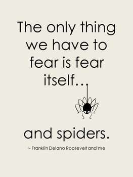Posters for Secondary Classrooms - Fear and Spiders