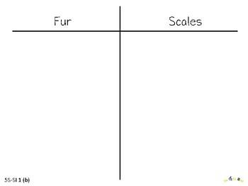 Fur vs. Scales Classification