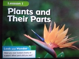 G2 Ch1 L1 - Plants and their parts Vocabulary sheet and homework