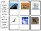 G4 Arctic Animals Photo Labeling
