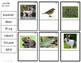 G4 Forest Animals Photo Labeling