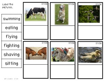 G8 Labeling Farm Animal Action Photos