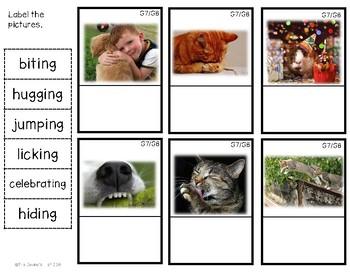 G8 Labeling Pet Action Photos
