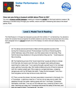G8 Narrative Reading & Writing - Stellar Performance Performance Task