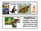 GA Second Grade Science Vocabulary Cards