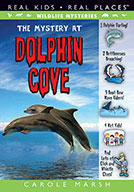 The Mystery at Dolphin Cove (eBook)