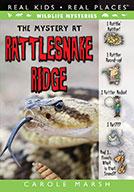 The Mystery at Rattlesnake Ridge (eBook)
