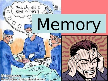 GCSE Psychology Multi Store Memory