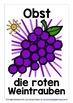 GERMAN FRUITS - 25 DISPLAY POSTERS / FLASHCARDS