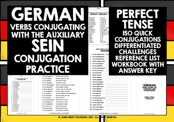 GERMAN VERBS SEIN IN THE PERFECT TENSE