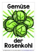 GERMAN FOR CHILDREN - 30 VEGETABLES POSTERS / FLASHCARDS