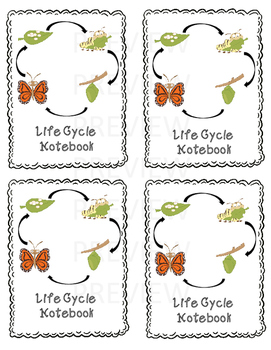 GLAD scout awards-Butterfly Life Cycle theme