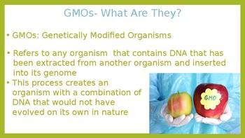 GMO Lesson