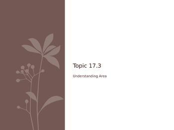 GO Math 17.3 Area