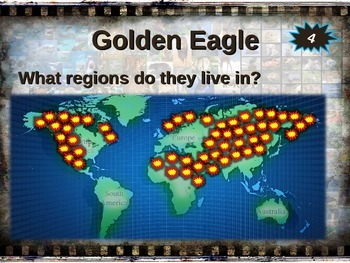 GOLDEN EAGLE: 10 facts. Fun, engaging PPT (w links & free graphic organizer)