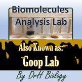 Lab: Biomolecules Analysis