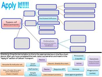 GOTech! Digital Interactive Biology Journal - The Cell and Cellular Transport