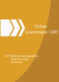 FRENCH GRAMMAR    4TH-5TH GRADE GRAMMAIRE CM1
