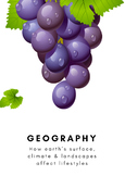 GRAPES Civilization Analysis Model for HASS (Humanities an