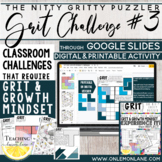 GRIT and Growth Mindset Challenge / Reflection / Application / Activity 3