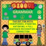 GROOVY GRAMMAR: HOMOPHONES, SYNONYMS, ANTONYMS, & SENTENCE RECOG. & CORRECTION