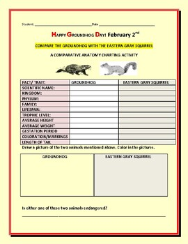 GROUNDHOG DAY: A COMPARATIVE ANATOMY ACTIVITY: GROUNDHOG/ SQUIRREL
