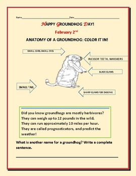 GROUNDHOG DAY: PARTS OF A GROUNDHOG ACTIVITY