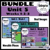 BUNDLE Kindergarten Wonders Unit 5 - Weeks 1, 2, and 3 - Google Slides