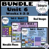GROWING BUNDLE Kindergarten Wonders Unit 6 - Weeks 1, 2, and 3 - Google Slides