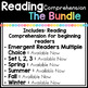 Reading Comprehension Passages For Beginning Readers (THE BUNDLE)