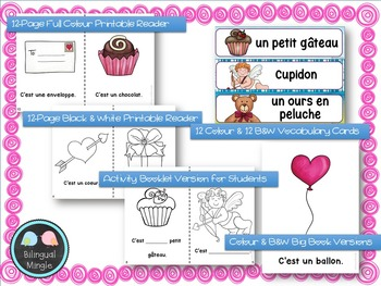 Bundle: Emergent French Mini Reader, Vocabulary Cards & Assessment